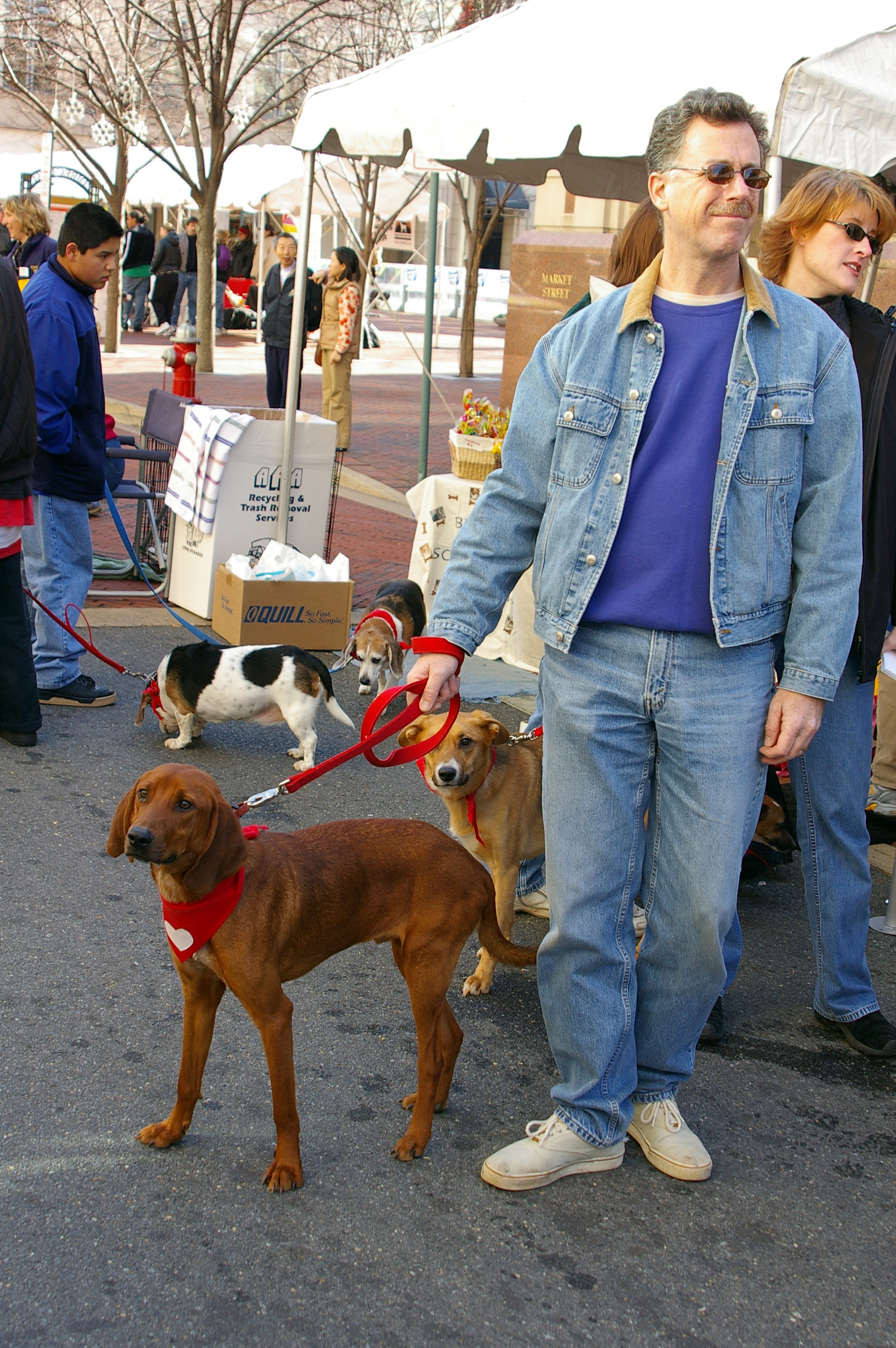 Pet Adoption Event | Home 4 The Holidays | Reston, VA